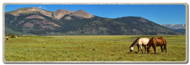 Colorado & Ranches Sold Fast. Sell your Colorado or Wyoming Ranch